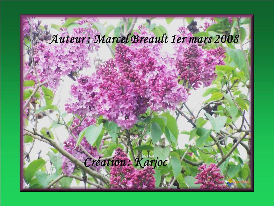 Auteur : Marcel Breault 1er mars 2008 Création : Karjoc