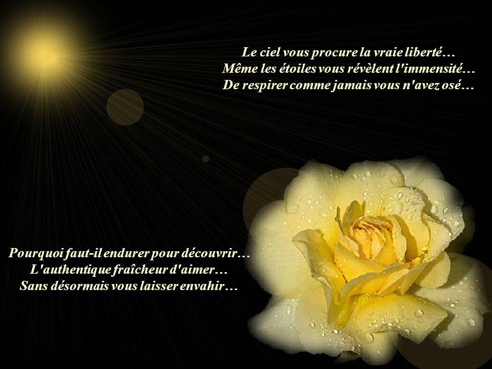 Doucement Poème de Jalet Ses autres poèmes sont sur les sites suivants: www.yvettedefrance.com www.chezrubis.com Musique: Secret Garden_Illumination Création Lise Tardif (Jan.2006) Bonne Journée