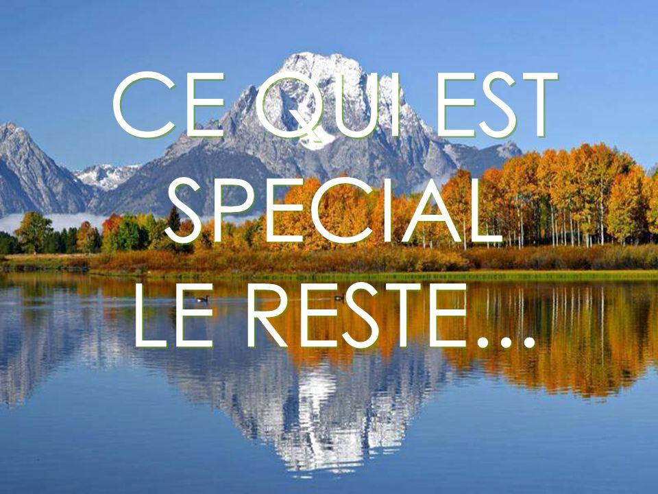 CE QUI EST SPECIAL LE RESTE...