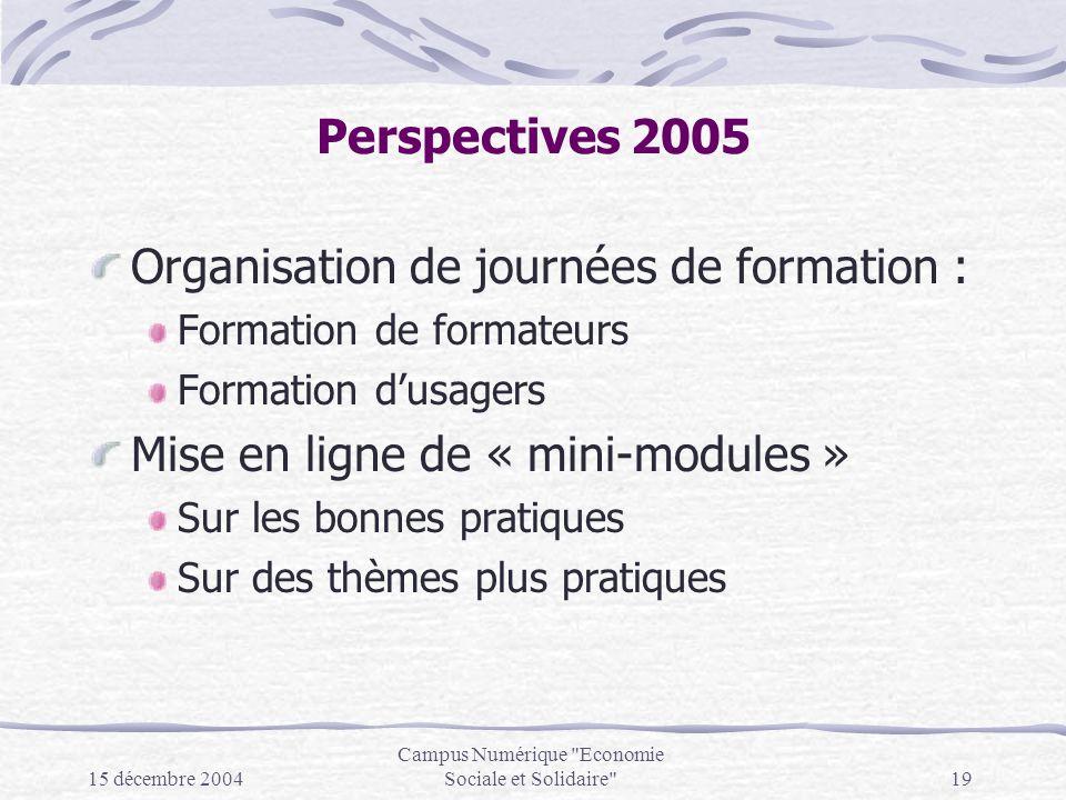 15 décembre 2004 Campus Numérique Economie Sociale et Solidaire 19 Perspectives 2005 Organisation de journées de formation : Formation de formateurs Formation dusagers Mise en ligne de « mini-modules » Sur les bonnes pratiques Sur des thèmes plus pratiques
