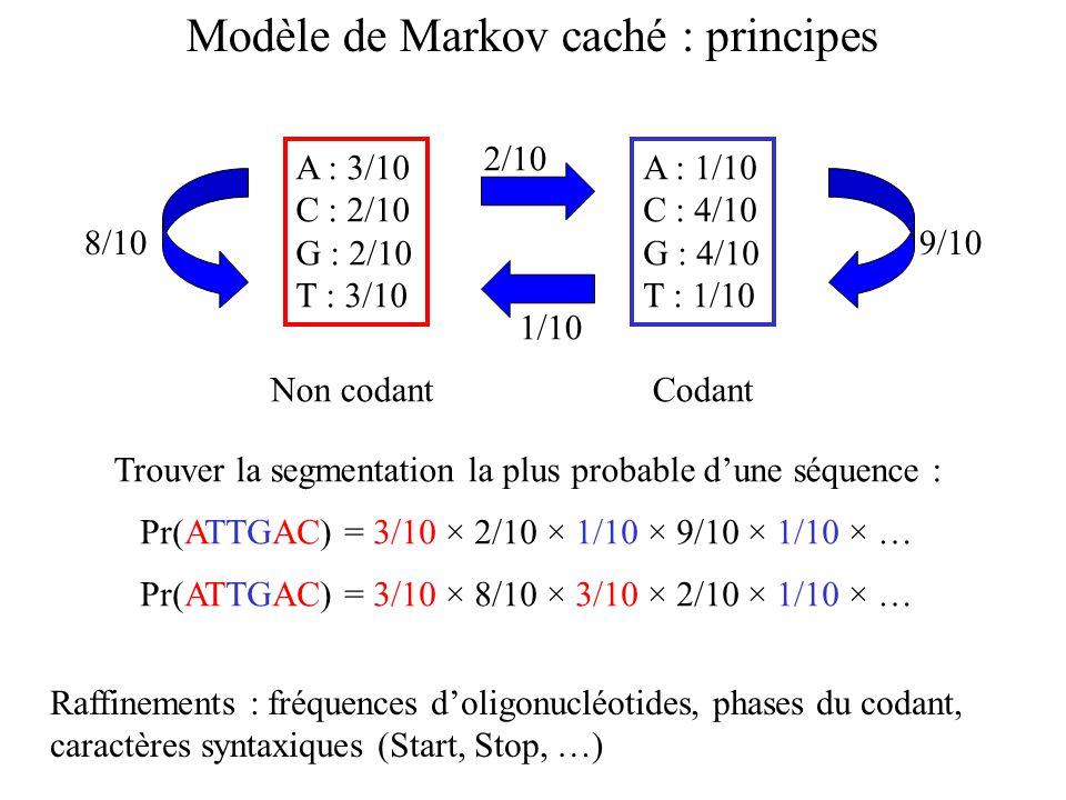 A : 3/10 C : 2/10 G : 2/10 T : 3/10 A : 1/10 C : 4/10 G : 4/10 T : 1/10 2/10 1/10 8/109/10 Non codantCodant Modèle de Markov caché : principes Pr(ATTGAC) = 3/10 × 2/10 × 1/10 × 9/10 × 1/10 × … Trouver la segmentation la plus probable dune séquence : Pr(ATTGAC) = 3/10 × 8/10 × 3/10 × 2/10 × 1/10 × … Raffinements : fréquences doligonucléotides, phases du codant, caractères syntaxiques (Start, Stop, …)