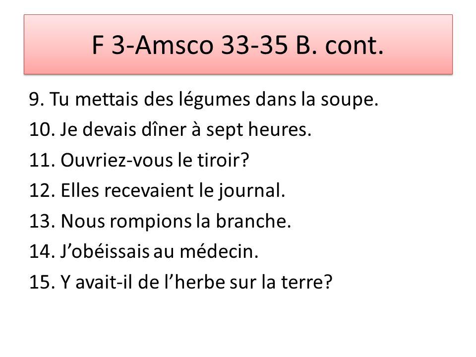 F 3-Amsco 33-35 B. cont. 9. Tu mettais des légumes dans la soupe.