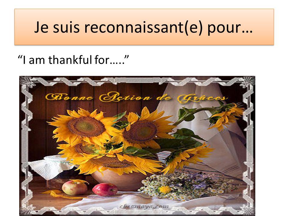 Je suis reconnaissant(e) pour… I am thankful for…..