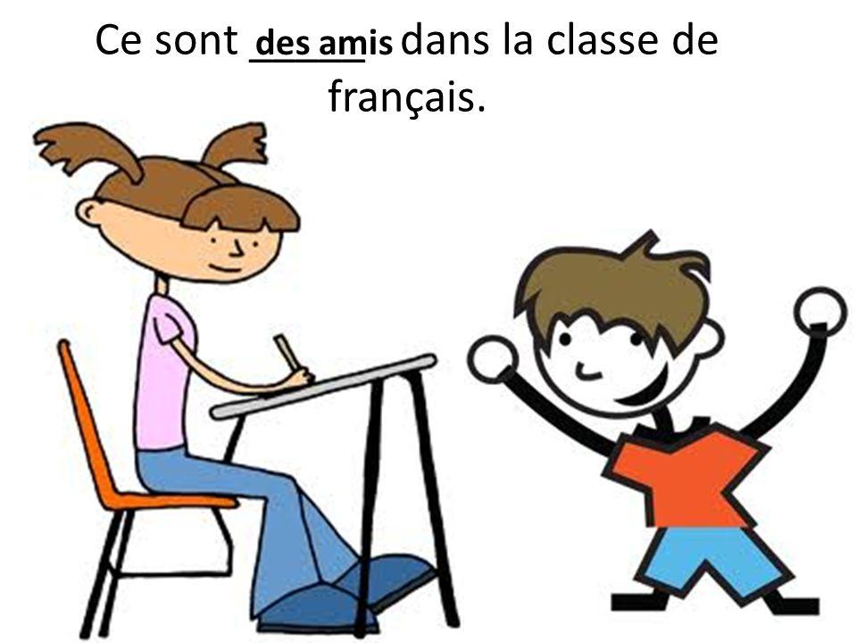 Ce sont _____ dans la classe de français. des amis