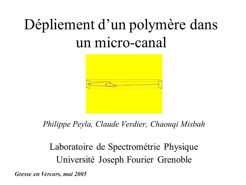 Dépliement dun polymère dans un micro-canal Philippe Peyla, Claude Verdier, Chaouqi Misbah Laboratoire de Spectrométrie Physique Université Joseph Fou