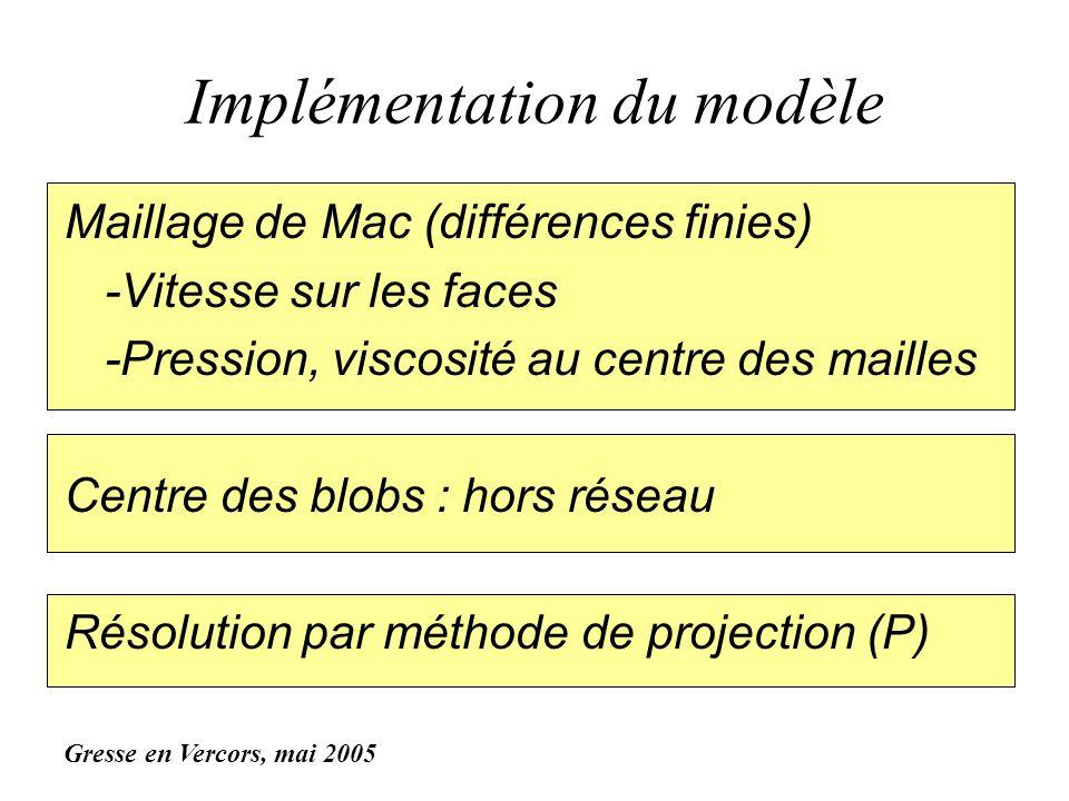 Implémentation du modèle Maillage de Mac (différences finies) -Vitesse sur les faces -Pression, viscosité au centre des mailles Centre des blobs : hor