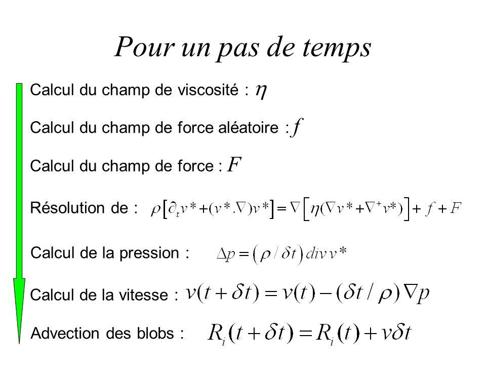 Pour un pas de temps Résolution de : Calcul du champ de force aléatoire : f Calcul de la pression : Calcul du champ de force : F Calcul du champ de vi