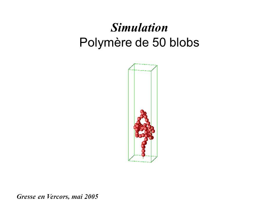 Simulation Polymère de 50 blobs Gresse en Vercors, mai 2005