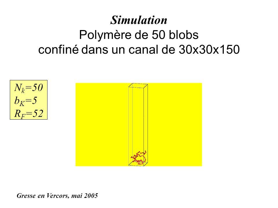 Simulation Polymère de 50 blobs confiné dans un canal de 30x30x150 N k =50 b K =5 R F =52 Gresse en Vercors, mai 2005