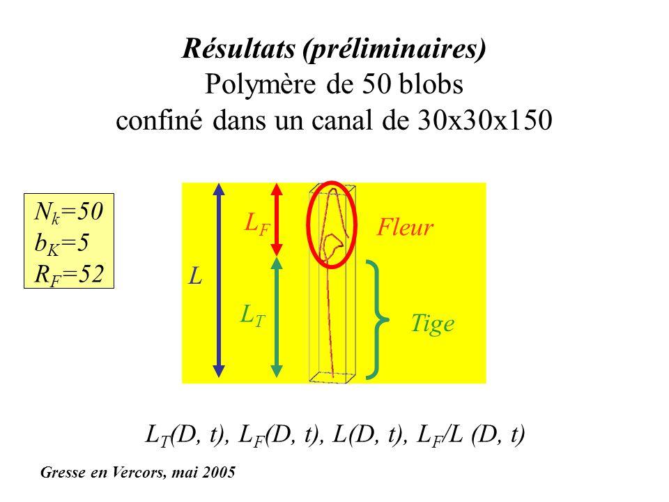 Résultats (préliminaires) Polymère de 50 blobs confiné dans un canal de 30x30x150 N k =50 b K =5 R F =52 Fleur LFLF Tige LTLT L L T (D, t), L F (D, t)