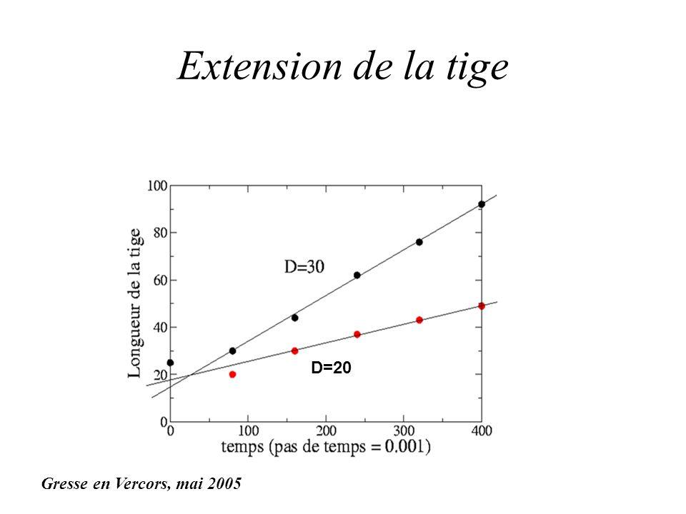 Extension de la tige Gresse en Vercors, mai 2005 D=20