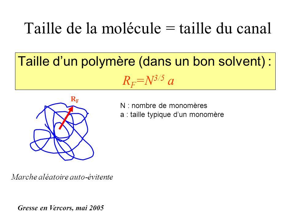 Taille de la molécule = taille du canal Taille dun polymère (dans un bon solvent) : R F =N 3/5 a RFRF N : nombre de monomères a : taille typique dun monomère Marche aléatoire auto-évitente R F =Ñ 3/5 où =g 3/5 a g monomères et Ñ=N/g Gresse en Vercors, mai 2005