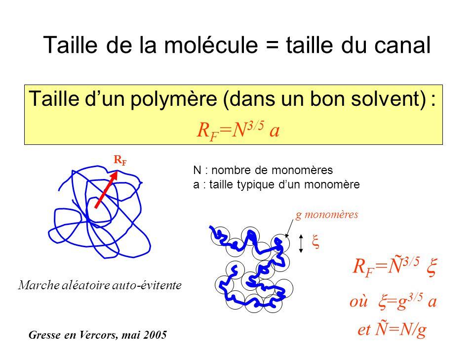 Taille de la molécule = taille du canal Taille dun polymère (dans un bon solvent) : R F =N 3/5 a RFRF N : nombre de monomères a : taille typique dun m