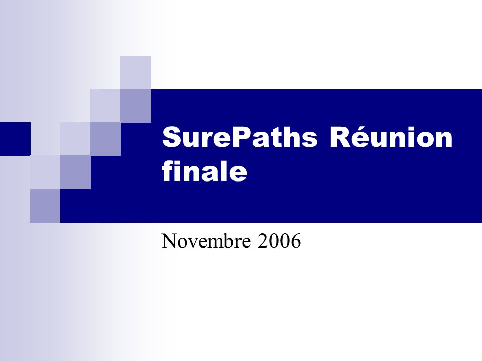 SurePaths Réunion finale Novembre 2006