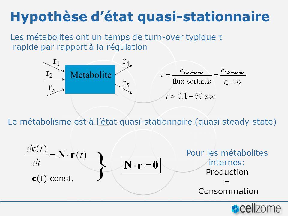 Hypothèse détat quasi-stationnaire Les métabolites ont un temps de turn-over typique rapide par rapport à la régulation Metabolite r1r1 r2r2 r3r3 r4r4