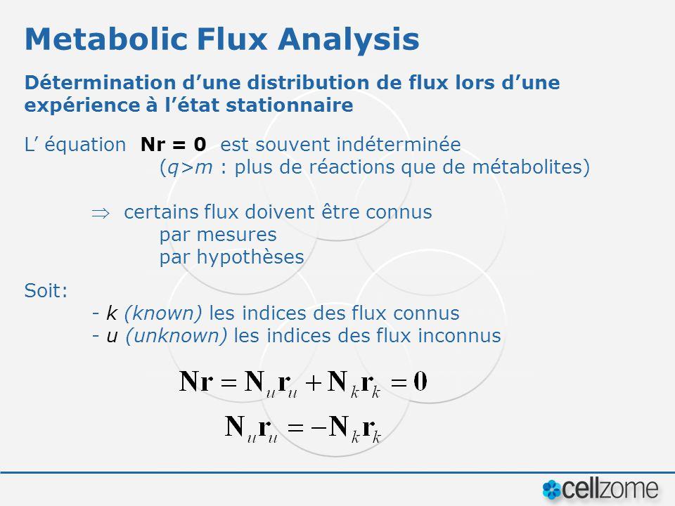 Metabolic Flux Analysis Détermination dune distribution de flux lors dune expérience à létat stationnaire L équation Nr = 0 est souvent indéterminée (