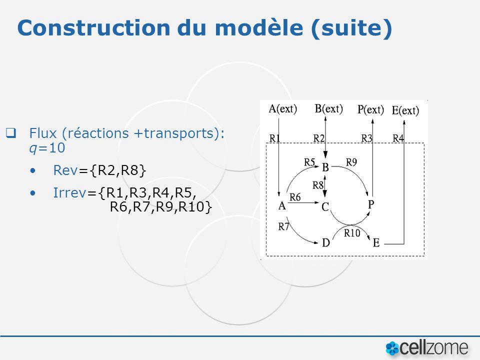 Construction du modèle (suite) Flux (réactions +transports): q=10 Rev={R2,R8} Irrev={R1,R3,R4,R5, R6,R7,R9,R10}