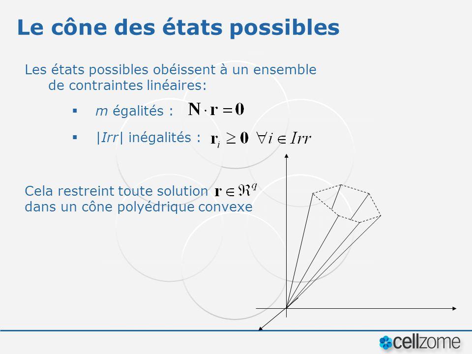 Le cône des états possibles Les états possibles obéissent à un ensemble de contraintes linéaires: m égalités : |Irr| inégalités : Cela restreint toute