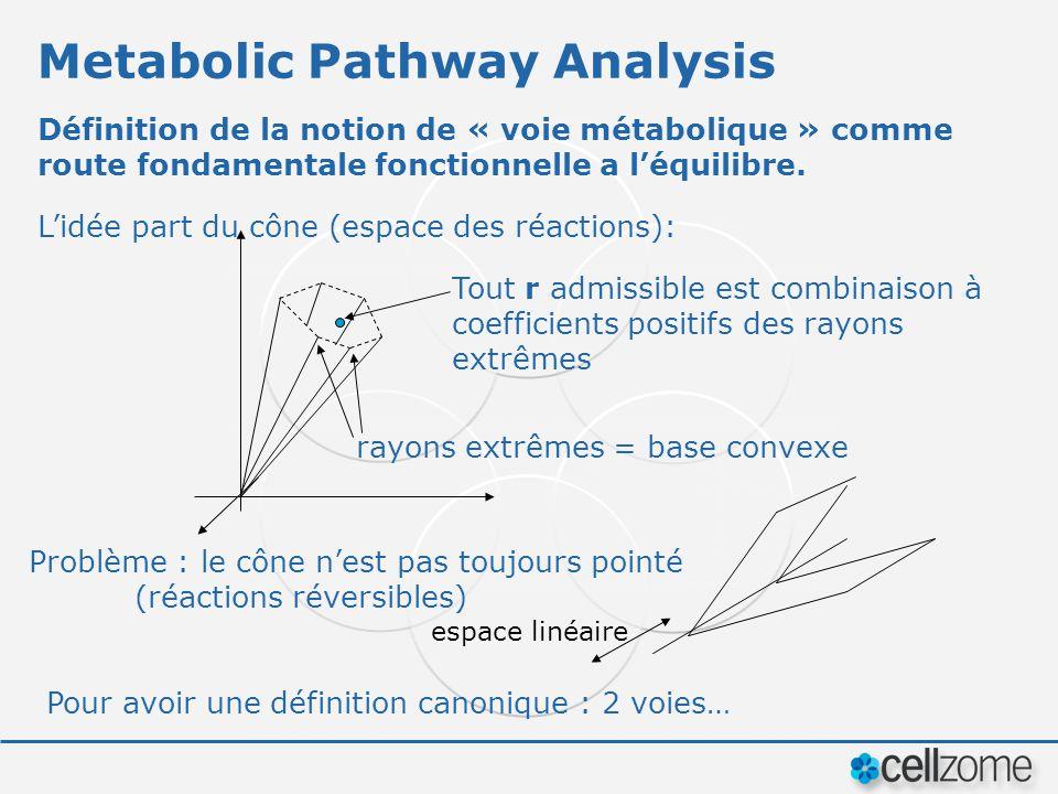 Metabolic Pathway Analysis Définition de la notion de « voie métabolique » comme route fondamentale fonctionnelle a léquilibre. Lidée part du cône (es