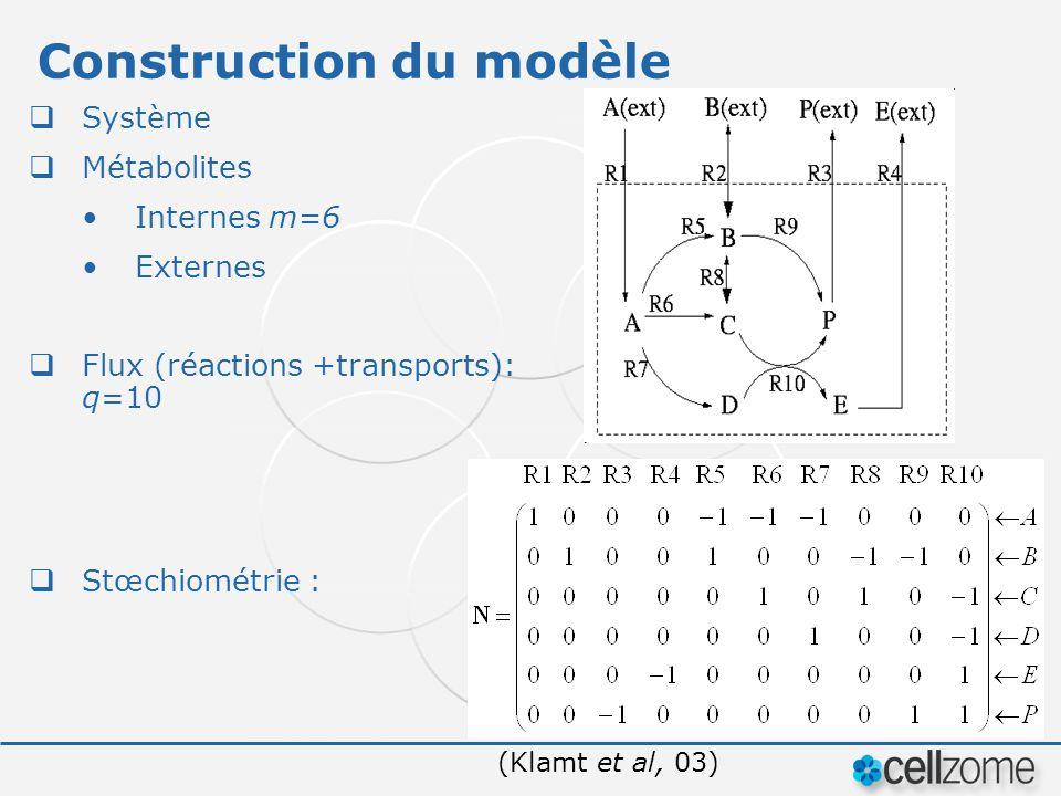 Construction du modèle Système Métabolites Internes m=6 Externes Flux (réactions +transports): q=10 Stœchiométrie : (Klamt et al, 03)