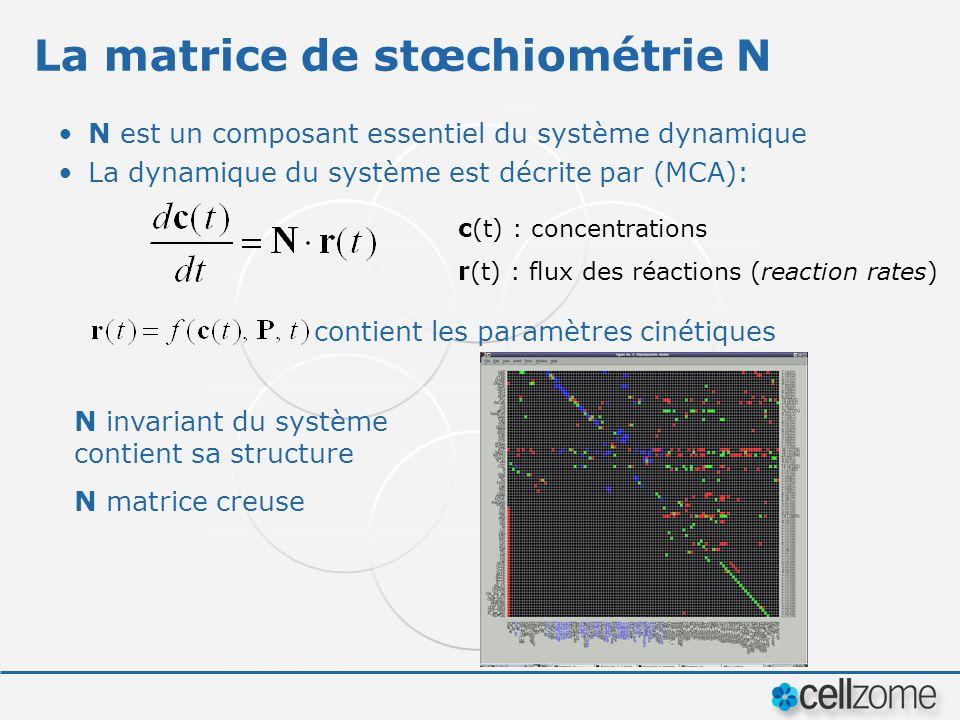 La matrice de stœchiométrie N N est un composant essentiel du système dynamique La dynamique du système est décrite par (MCA): contient les paramètres