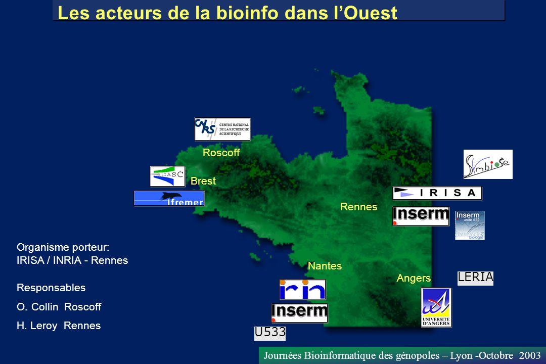 Journées Bioinformatique des génopoles – Lyon -Octobre 2003 Les acteurs de la bioinfo dans lOuest Roscoff Brest Rennes Nantes Angers Organisme porteur