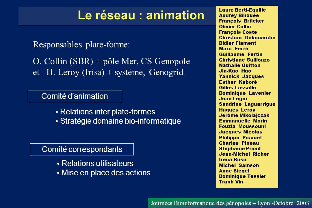 Journées Bioinformatique des génopoles – Lyon -Octobre 2003 Le réseau : animation Comité danimation Relations inter plate-formes Stratégie domaine bio