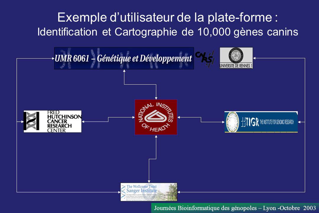 Journées Bioinformatique des génopoles – Lyon -Octobre 2003 Exemple dutilisateur de la plate-forme : Identification et Cartographie de 10,000 gènes ca