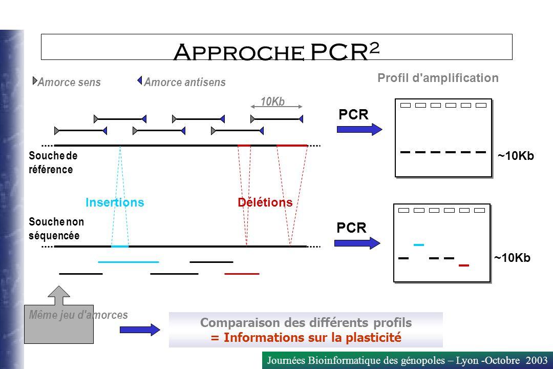 Journées Bioinformatique des génopoles – Lyon -Octobre 2003 Amorce sensAmorce antisens Comparaison des différents profils = Informations sur la plasti