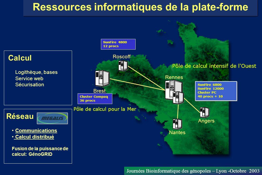 Journées Bioinformatique des génopoles – Lyon -Octobre 2003 Logithèque, bases Service web Sécurisation Ressources informatiques de la plate-forme Comm