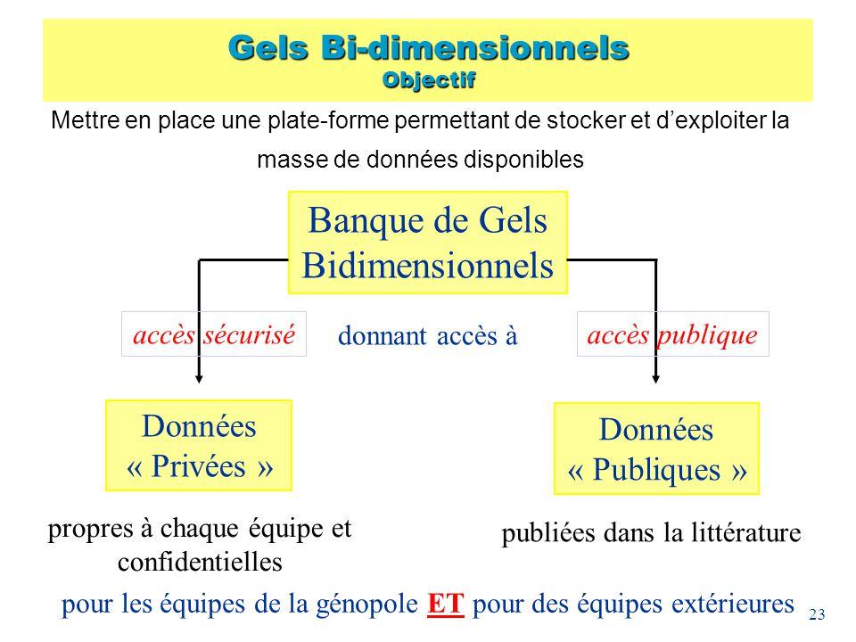 23 Banque de Gels Bidimensionnels publiées dans la littérature donnant accès à Données « Publiques » Données « Privées » propres à chaque équipe et co