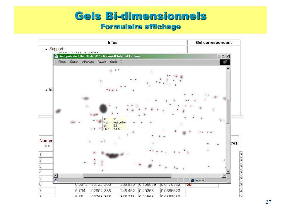 27 Gels Bi-dimensionnels Formulaire affichage