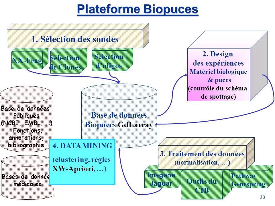 33 Plateforme Biopuces Base de données Biopuces GdLarray Sélection de Clones XX-Frag Sélection doligos 1. Sélection des sondes 2. Design des expérienc