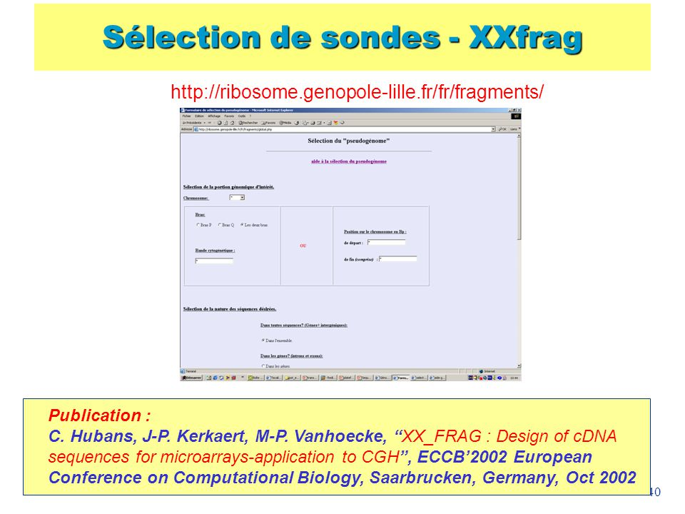 40 Sélection de sondes - XXfrag http://ribosome.genopole-lille.fr/fr/fragments/ Publication : C. Hubans, J-P. Kerkaert, M-P. Vanhoecke, XX_FRAG : Desi
