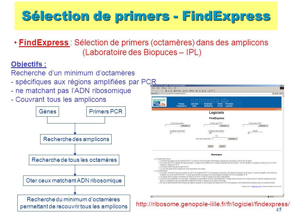 45 FindExpress : Sélection de primers (octamères) dans des amplicons (Laboratoire des Biopuces – IPL) Objectifs : Recherche dun minimum doctamères - s