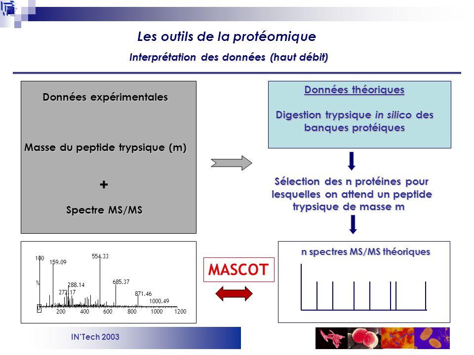 INTech 2003 Protéome (spectres MS/MS) Banques de données protéiques Interprétation des données (haut débit) Les outils de la protéomique