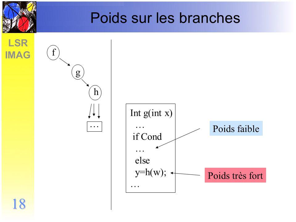LSR IMAG 19 Plan de la présentation Introduction Choix et objectifs Orientation prise : modélisation de fonctions –Comment modéliser.