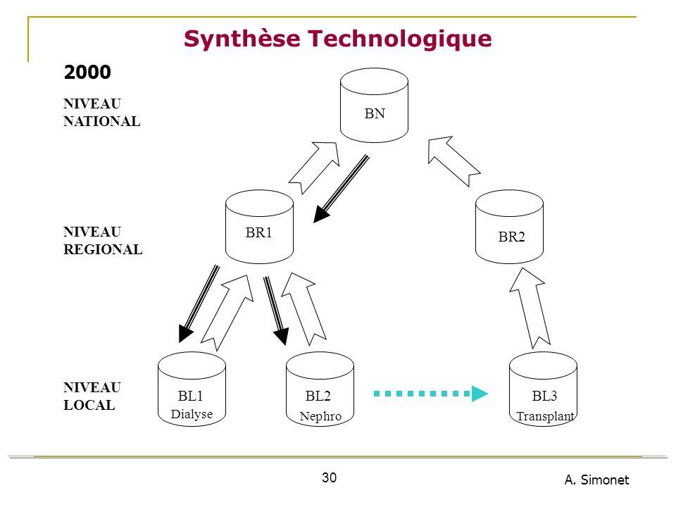 A. Simonet 30 Synthèse Technologique NIVEAU NATIONAL NIVEAU REGIONAL NIVEAU LOCAL BL1BL2BL3 BR1 BR2 BN Dialyse NephroTransplant 2000
