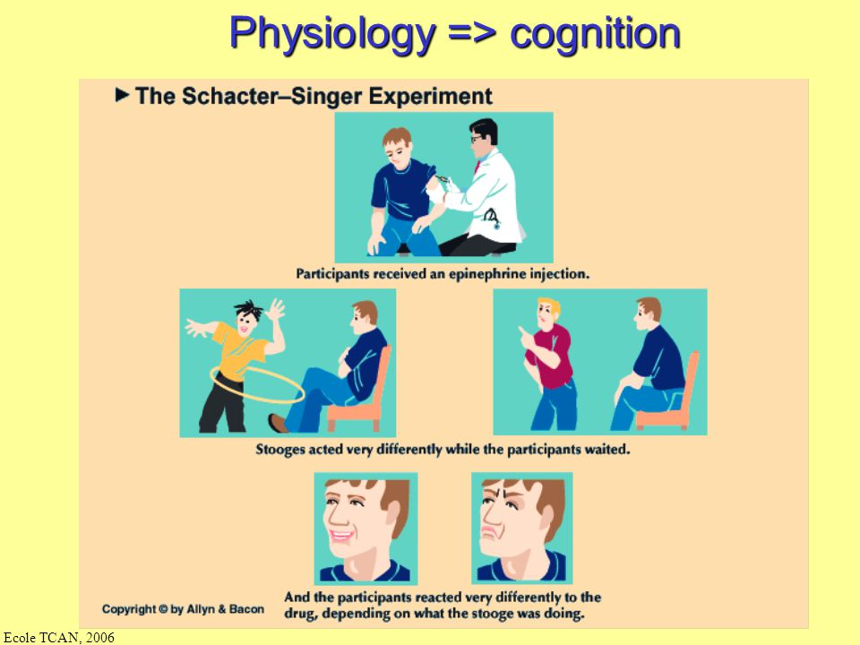 Ecole TCAN, 2006 Emotion in body Body/Physical –blood pressure –heart rate –adrenaline levels –muscle activity when smiling, frowning, etc.
