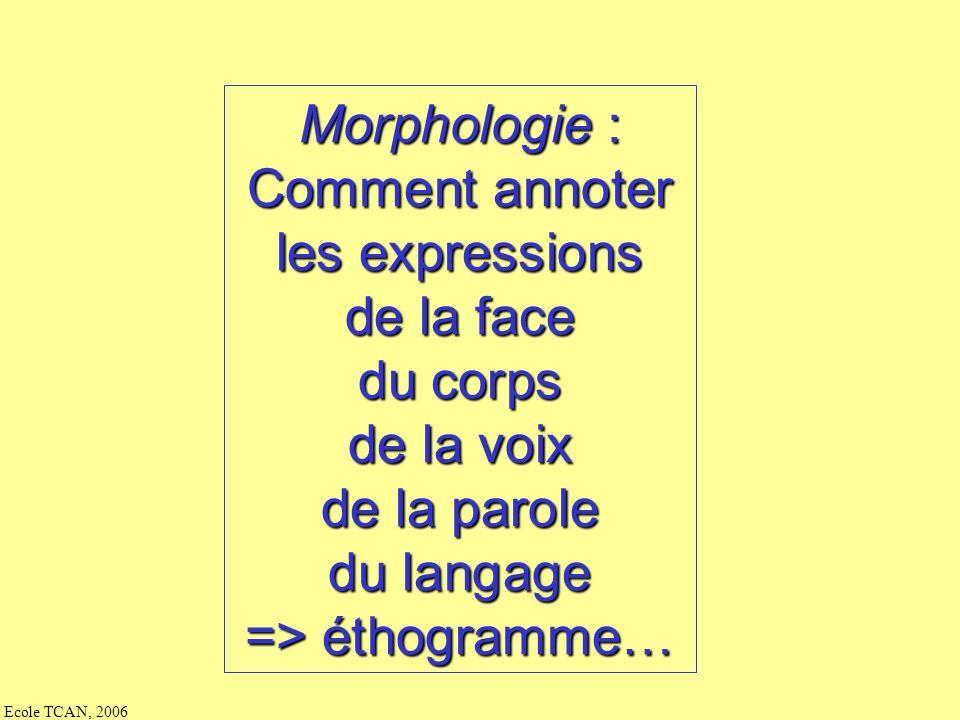 -- + annotations étape 1étape 2étape 3 -- + annotations sujet 1 … sujet n données physio parole (éditeur = Praat) (mot monosyl) (commentaires) langage (éditeur = transcriber) voix face EGG articulatoire corps