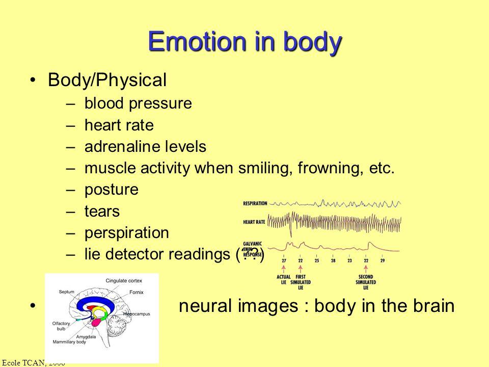Ecole TCAN, 2006 Ekman : une école en faciale : psychologie + talking heads/robotique Beaucoup de travaux en facial, peu de modèles alternatifs par ex
