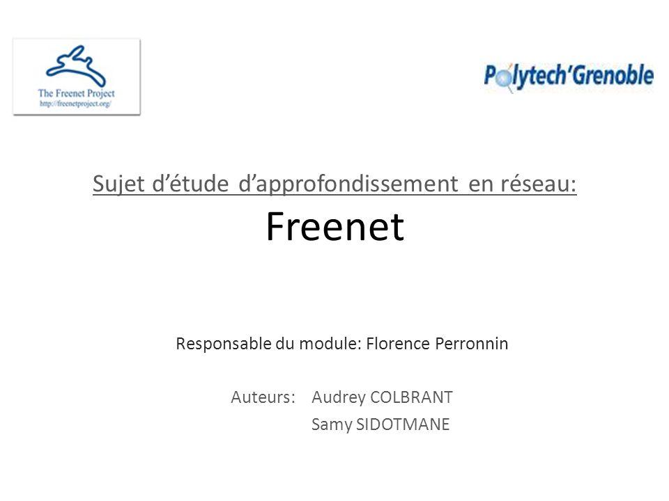 Sujet détude dapprofondissement en réseau: Freenet Responsable du module: Florence Perronnin Auteurs: Audrey COLBRANT Samy SIDOTMANE