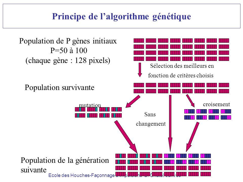 Ecole des Houches-Façonnage dimpulsions- B. Chatel-Janv09 Population de P gènes initiaux P=50 à 100 (chaque gène : 128 pixels) Sélection des meilleurs
