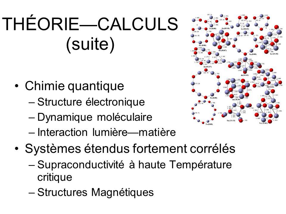 THÉORIECALCULS (suite) Chimie quantique –Structure électronique –Dynamique moléculaire –Interaction lumièrematière Systèmes étendus fortement corrélés –Supraconductivité à haute Température critique –Structures Magnétiques
