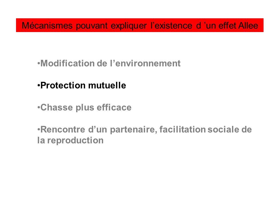 Mécanismes pouvant expliquer lexistence d un effet Allee Modification de lenvironnement Protection mutuelle Chasse plus efficace Rencontre dun partena