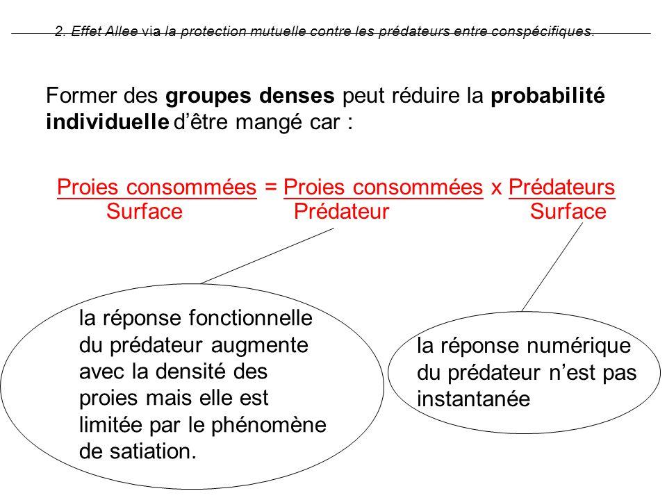 Former des groupes denses peut réduire la probabilité individuelle dêtre mangé car : Proies consommées = Proies consommées x Prédateurs Surface Prédat
