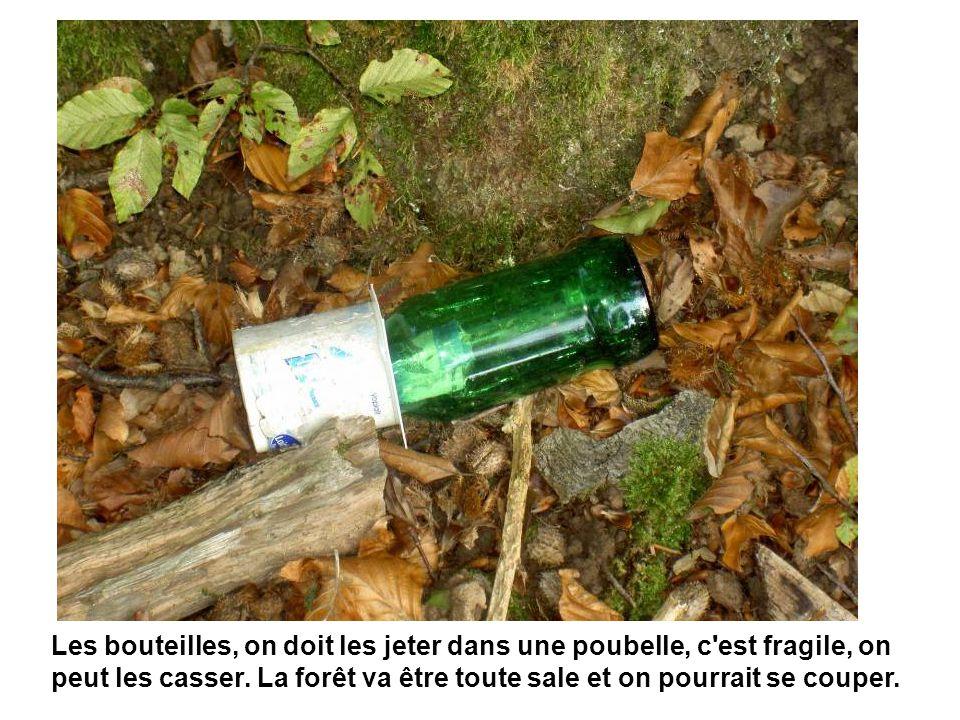 Les bouteilles, on doit les jeter dans une poubelle, c'est fragile, on peut les casser. La forêt va être toute sale et on pourrait se couper.