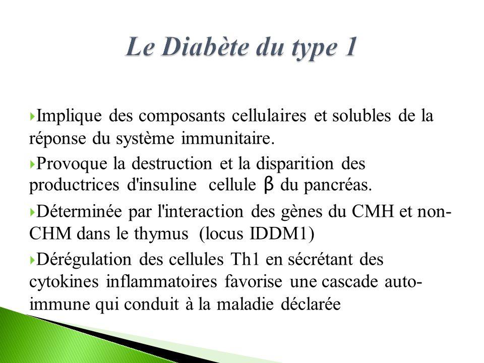 Implique des composants cellulaires et solubles de la réponse du système immunitaire.