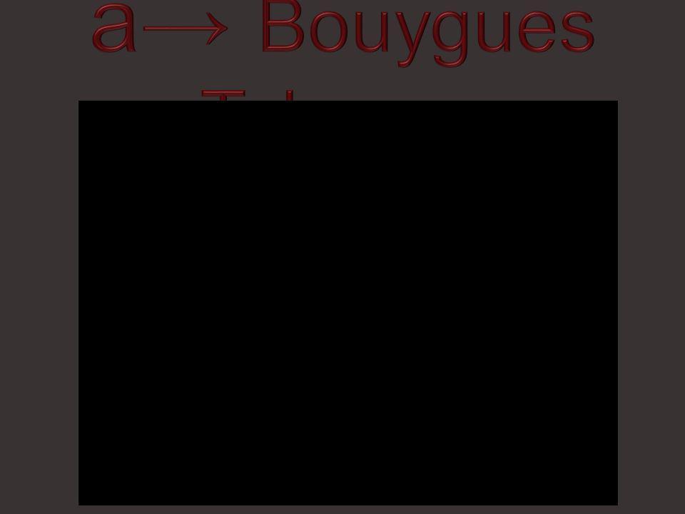 A )Les fées Bouygues Telecom - Francine B )Les Vampires Curly – Audi C )Le Diable Demon Babe Polaroïds - Orangina D )Les Sorcières Blanche neige Banque Populaire – Blanche Neige Nescafé