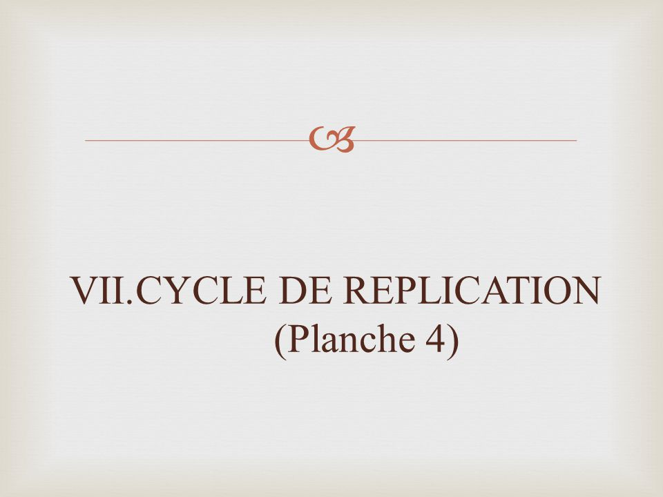 VII.CYCLE DE REPLICATION (Planche 4)